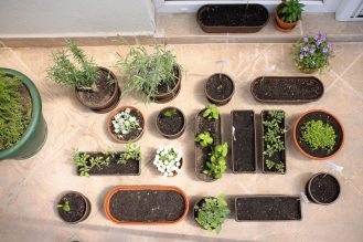 our garden ^_^